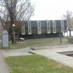 kormoran_taborhely 001